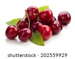 Small photo of Ripe cherries isolated on white background.