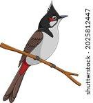 cute red whiskered bulbul bird...   Shutterstock .eps vector #2025812447