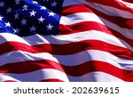 usa flag | Shutterstock . vector #202639615