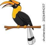 cute hornbill bird cartoon...   Shutterstock .eps vector #2026494257