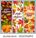 hello autumn vector banners...   Shutterstock .eps vector #2026556894