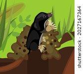cartoon black mole on molehill...   Shutterstock .eps vector #2027167364