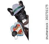 bavarian german dog  with... | Shutterstock . vector #202731175
