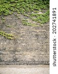 overgrown ivy brick wall with... | Shutterstock . vector #202741891