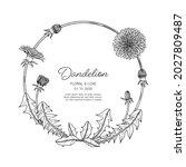 hand drawn dandelion floral...   Shutterstock .eps vector #2027809487