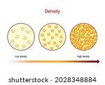 density. diagram compares... | Shutterstock .eps vector #2028348884