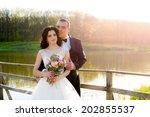 wedding. beautiful couple... | Shutterstock . vector #202855537