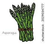 hand drawn asparagus... | Shutterstock .eps vector #2029034777