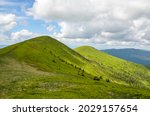Beautiful Summer Landscape With ...