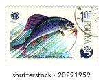 Old polish stamp with fish - stock photo