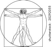 the vitruvian man. detailed... | Shutterstock . vector #20292055