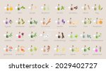 a large set of essential oil...   Shutterstock .eps vector #2029402727
