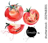 tomato set. hand drawn... | Shutterstock .eps vector #202968301