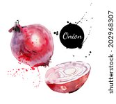 red onion. hand drawn... | Shutterstock .eps vector #202968307