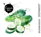 green cucumber. hand drawn... | Shutterstock .eps vector #202968337