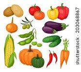 icon set of fresh ripe stylized ... | Shutterstock .eps vector #203068867