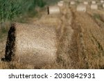 Bales Of Straw In The Field....