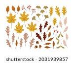 hand drawn set of autumn leaves.... | Shutterstock .eps vector #2031939857