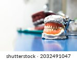 Artificial Jaw. Dental...