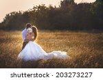 wedding. beautiful couple...   Shutterstock . vector #203273227