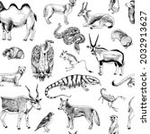 hand drawn seamless pattern of... | Shutterstock .eps vector #2032913627