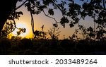 Sunset Behind The Silhouette Of ...