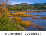 Seal Cove Pond In The Colors Of ...