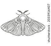 decorative fantastic moth.... | Shutterstock .eps vector #2033916407