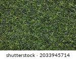 closeup artificial green grass...   Shutterstock . vector #2033945714