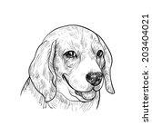 portrait of adorable beagle on... | Shutterstock .eps vector #203404021