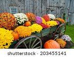 Colorful Flowers In Rustic...