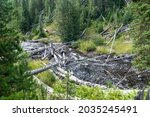 View Of The Little Firehole...