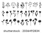 silhouettes floral elements.... | Shutterstock .eps vector #2036492834