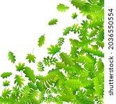 bush leaves beautiful vector...   Shutterstock .eps vector #2036550554