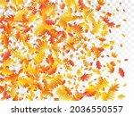 oak  maple  wild ash rowan...   Shutterstock .eps vector #2036550557