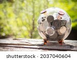 Clear Glass Pig Piggy Bank With ...