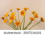 Gerbera Flowers Bouquet...
