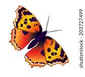 butterflies design | Shutterstock .eps vector #203727499