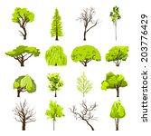decorative deciduous foliage... | Shutterstock . vector #203776429
