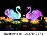 Two Colorful Lantern Swans With ...