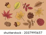 autumn leaves ink sketch in... | Shutterstock .eps vector #2037995657