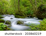 oirase gorge in fresh green ... | Shutterstock . vector #203860219