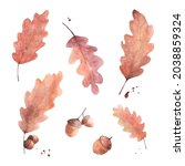 set of fall brown oak leaves...   Shutterstock .eps vector #2038859324
