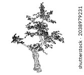 highly detailed drawing of tree ... | Shutterstock .eps vector #2038979231