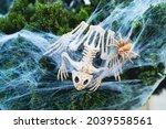 Autumn Holiday. Skeleton Of A...