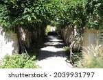 Photograph Of A Walking Path...