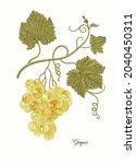 grapes. floral element. vector... | Shutterstock .eps vector #2040450311