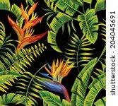tropic summer painting seamless ...   Shutterstock .eps vector #204045691