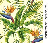 tropic summer painting seamless ... | Shutterstock .eps vector #204045694