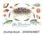 set of sea creature watercolor...   Shutterstock . vector #2040464807